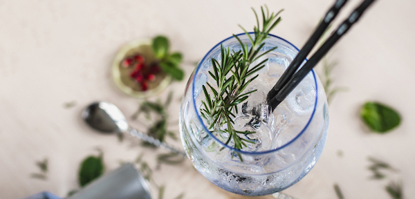 Gin and tonic glass with rosemary