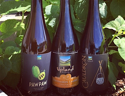 Upland Stirs Up Midwestern Sour Mania