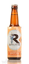 Revelation Craft Brewing Co-Conspirator Apricot Sour Ale