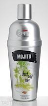Coppa Mojito Cocktail