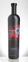 Nebula9 Pomegranate Blueberry Vodka