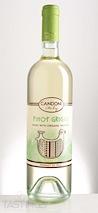 Candoni 2013  Pinot Grigio