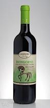 Candoni 2013 Buongiorno Organic Red Blend Primitivo Syrah Italy