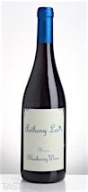 Anthony Lee's NV Blueberry Wine Maine