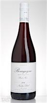 Nicolas Potel 2014 Pinot Noir, Bourgogne Rouge