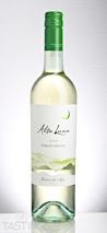 Alta Luna 2016  Pinot Grigio