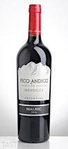 Pico Andico 2016 Special Selection Malbec