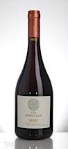Chocalan 2017 Origen Gran Reserva Pinot Noir