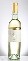 Bottega Vinaia 2016 Estate Bottled, Pinot Grigio, Trentino