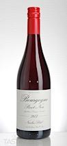 Nicolas Potel 2017  Pinot Noir