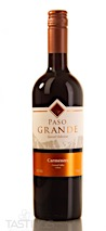 Paso Grande 2019 Special Selection, Carmenère, Central Valley