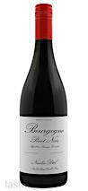 Nicolas Potel 2020 Pinot Noir, Bourgogne Rouge