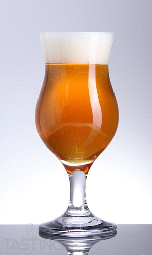 Beer Glass Thistle Amber.jpg